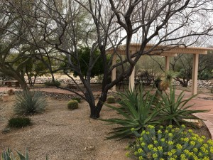 Women's History Month @ Beth Shalom Temple Center | Green Valley | Arizona | United States