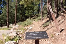 SHABBAT MORNING SERVICE & HIKE on Mt. Lemmon, Box Springs @ Mt. Lemmon at Box Spring